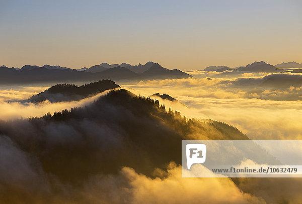 Deutschland  Bayern  Bayerische Voralpen  Sonnenuntergang am Jochberg  Morgenstimmung