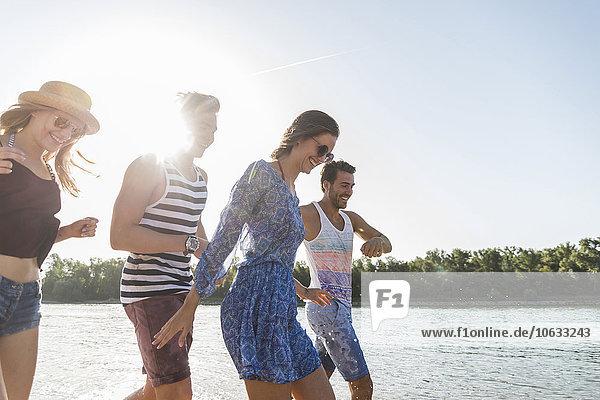 Glückliche Freunde am Fluss im Sommer