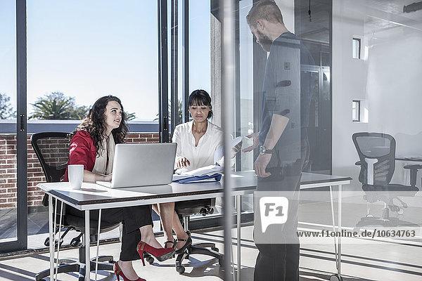 Junge Berufstätige  die gemeinsam im Büro arbeiten