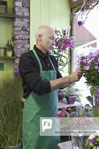 Mature man gardening plant