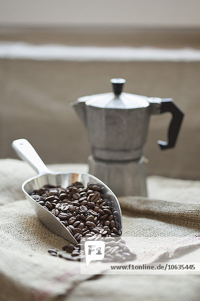 Scoop full of coffee beans with coffee maker on sack