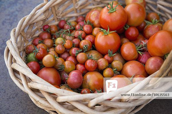 Frische Tomaten im Weidenkorb im hohen Winkel