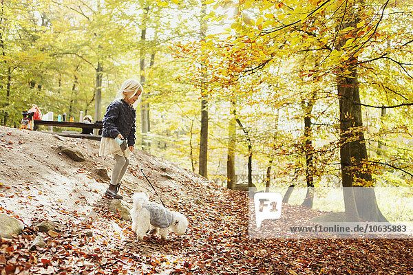 Girl with dog in forest during autumn