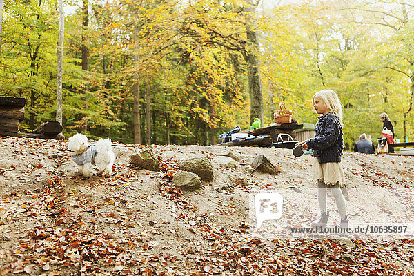 Girl playing with dog in forest