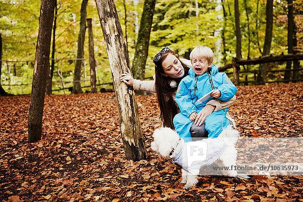sitzend weinen Frau sehen Junge - Person Wald sitzend,weinen,Frau,sehen,Junge - Person,Wald