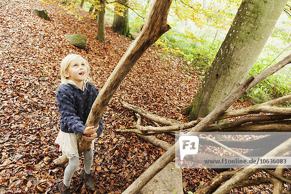 High angle view of girl holding log in forest