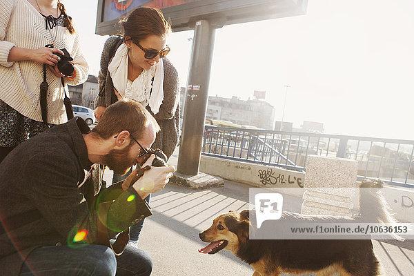Freundschaft Großstadt Hund Brücke fotografieren Freundschaft,Großstadt,Hund,Brücke,fotografieren