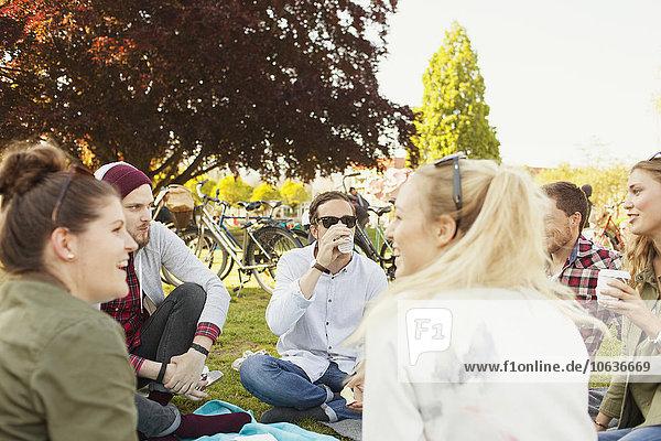 Fröhlichkeit Freundschaft Picknick Fröhlichkeit,Freundschaft,Picknick