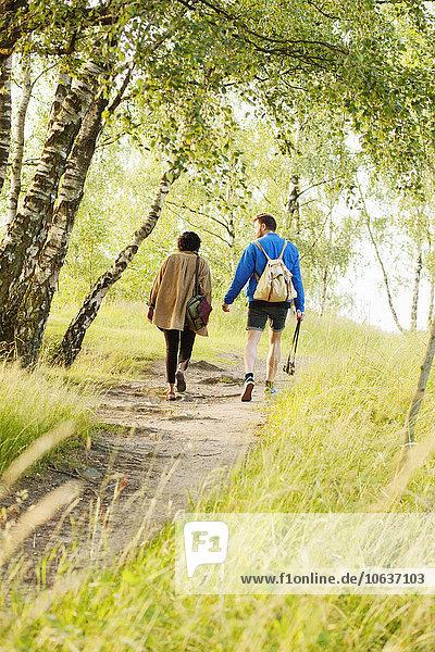 gehen Fernverkehrsstraße Wald schmutzig Rückansicht Ansicht Mann und Frau
