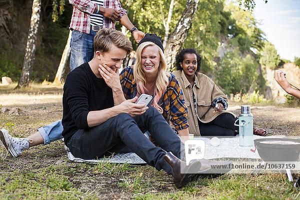 benutzen Fröhlichkeit Freundschaft Picknick Smartphone