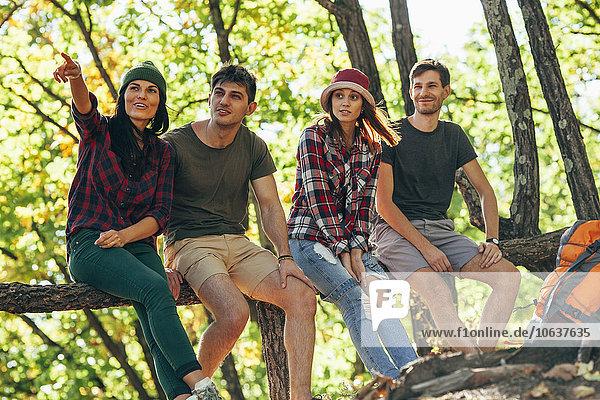 Junge Frau zeigt weg  während sie mit Freunden im Wald sitzt.