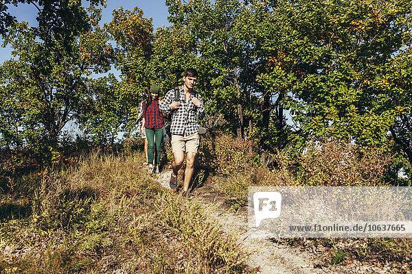 Männliche und weibliche Freunde beim Wandern im Wald