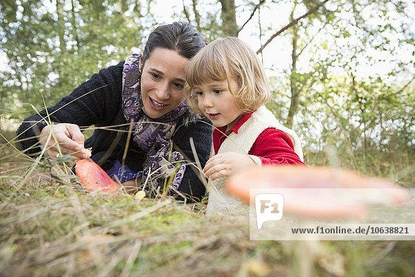Mutter und Tochter erkunden Pilze auf dem Feld