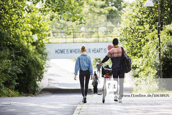 gehen Straße Rückansicht Ansicht Fahrrad Rad