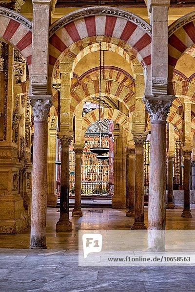 Gebäude Engagement Leistung Architektur Monument Kathedrale Entdeckung 1 Name groß großes großer große großen Geographie Regenwald Jungfrau Maria Madonna Andalusien katholisch Christ maurisch Moschee spanisch