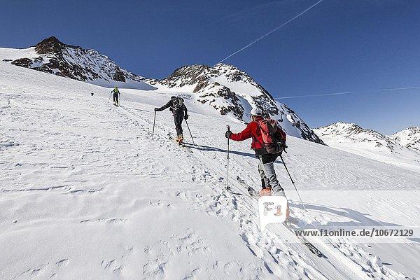 Skitourengeher beim Aufstieg auf die Finailspitze  Schnalstaler Gletscher  hinten die Finailköpfe  Schnalstal  Südtirol  Alpen  Trentino-Südtirol  Italien  Europa