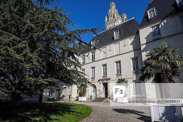Frankreich Europa Palast Schloß Schlösser Nostalgie groß großes großer große großen Reise Zeder Innenhof Hof Libanon Loiretal