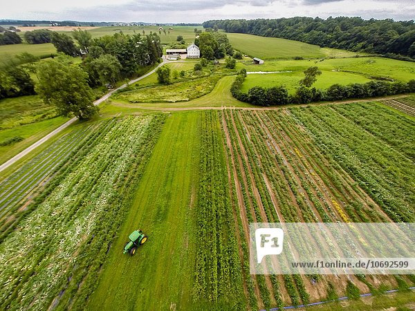 Aerial view of Big White barn in Buckystown  MD.