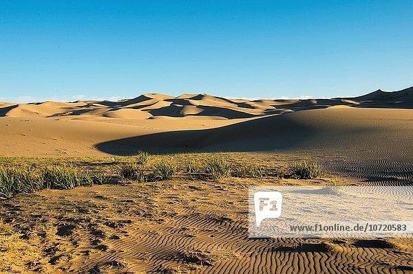 Wüste Sand Düne
