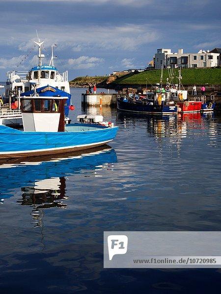 Hafen Sonnenuntergang Boot England Northumberland