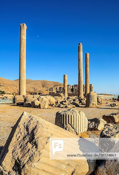 Iran  Persepolis City  Apadana Palace columns and Tripylon of Audience.