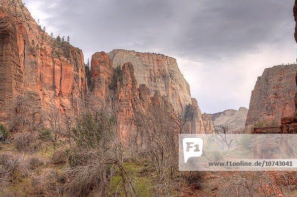 Nationalpark Landschaft