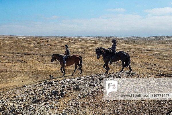 reiten - Pferd Swakopmund