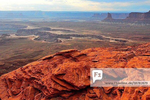 über grün Fluss Canyonlands Nationalpark sehen Utah
