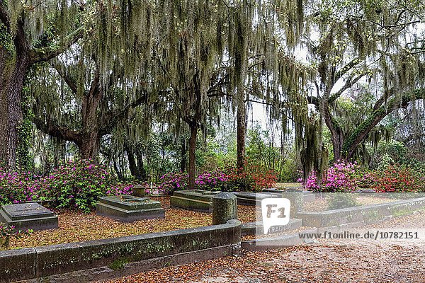Bonaventure Cemetery in Savannah  Georgia.