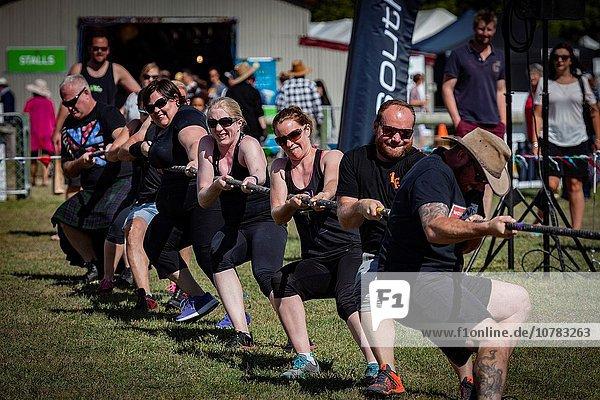 geselliges Beisammensein Spiel Tauziehen Schottische Highlands neuseeländische Südinsel Neuseeland