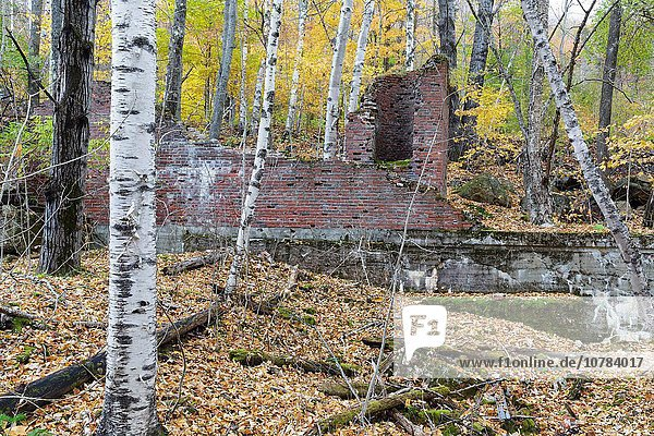Remnants of the powerhouse in the abandoned village of Livermore during the autumn months. This was a logging village in the late 19th and early 20th centuries along the Sawyer River Railroad in Livermore  New Hampshire. The town and railroad were owned by the Saunders family.