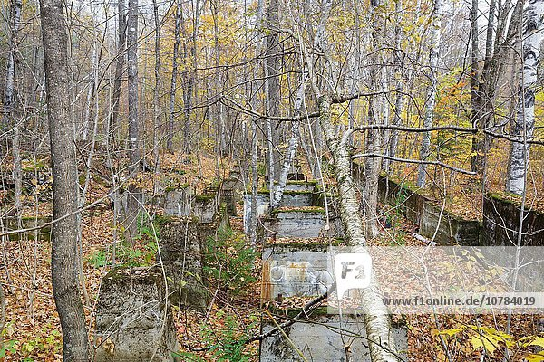 Remnants of the sawmill in the abandoned village of Livermore during the autumn months. This was a logging village in the late 19th and early 20th centuries along the Sawyer River Logging Railroad in Livermore  New Hampshire. The town and railroad were owned by the Saunders family.