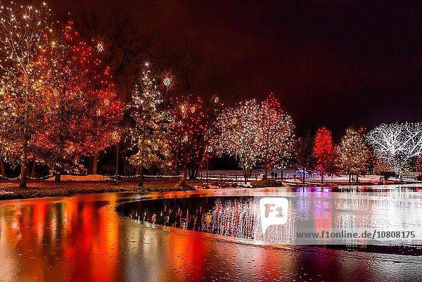 Urlaub, Beleuchtung, Licht, Weihnachten, Garten, Hudson River, Show