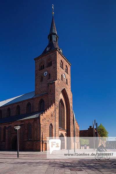 Denmark  Funen  Odense  Odense Domkirke Cathedral.