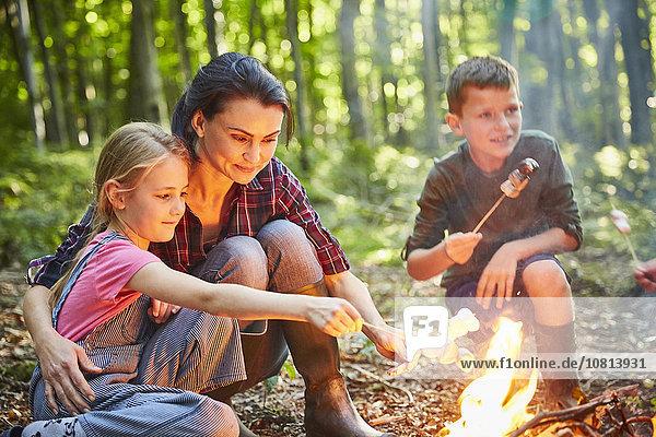 Familienbraten von Marshmallows am Lagerfeuer im Wald