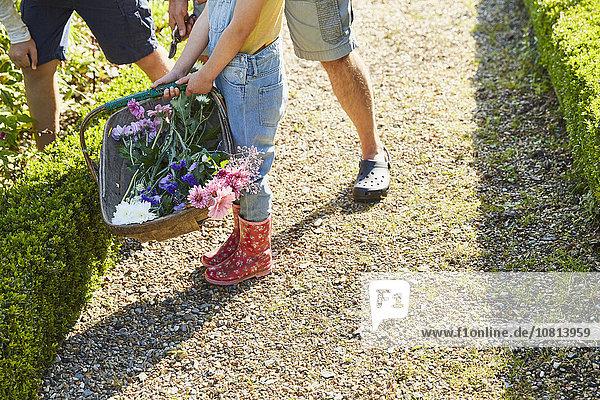 Familie pflückt Blumen im Garten