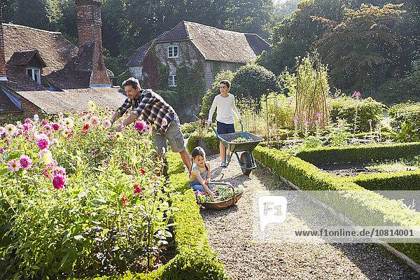 Familiengärtnerei im sonnigen Blumengarten