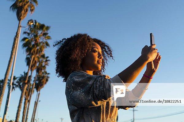 Mittlere erwachsene Frau  Sonnenlicht  fotografieren  Smartphone benutzen
