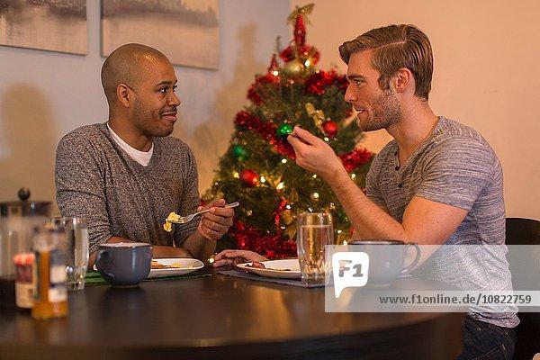 Männliches Paar am Tisch sitzend  beim Frühstück  Weihnachtsbaum im Hintergrund