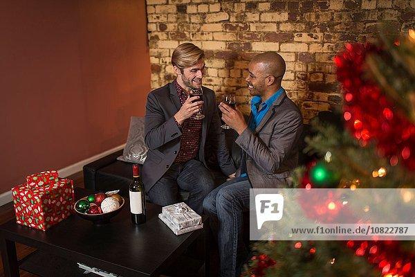 Männliches Paar feiert Weihnachten  hält Weingläser  macht einen Toast