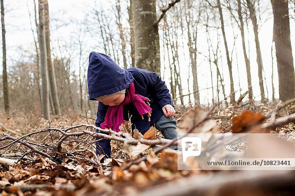 Female toddler bending forward to play with autumn leaves