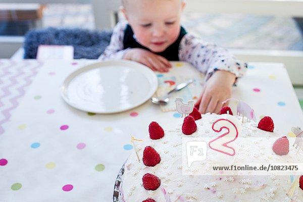 Female toddler reaching for birthday cake raspberries at table