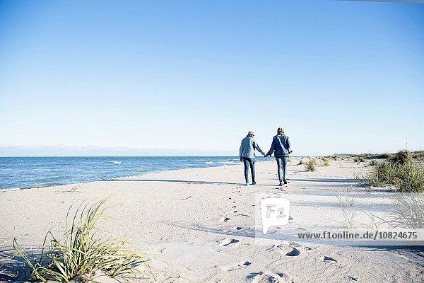 Zwei junge Frauen  die am Strand entlanggehen  Händchen haltend  Rückansicht
