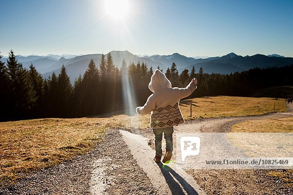 Rear view of female toddler toddling on sunlit dirt track  Tegernsee  Bavaria  Germany