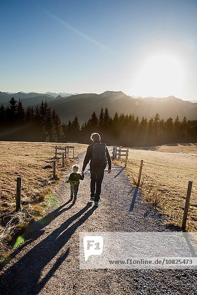 Rear view of man and toddler daughter walking on dirt track  Tegernsee  Bavaria  Germany