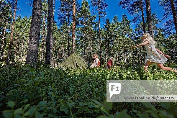 Wald camping 3 Mädchen spielen
