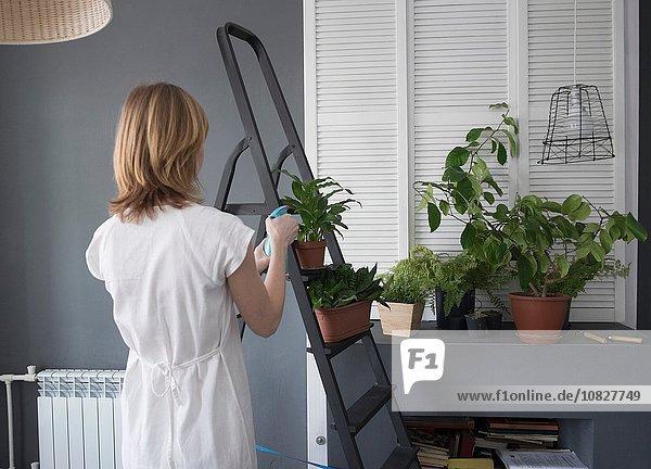 Rückansicht der Frau beim Gießen von Topfpflanzen auf der Stufenleiter