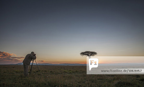Caucasian photographer photographing tree in savanna