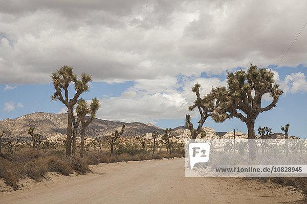 leer Ländliches Motiv ländliche Motive Landschaft Fernverkehrsstraße Wüste