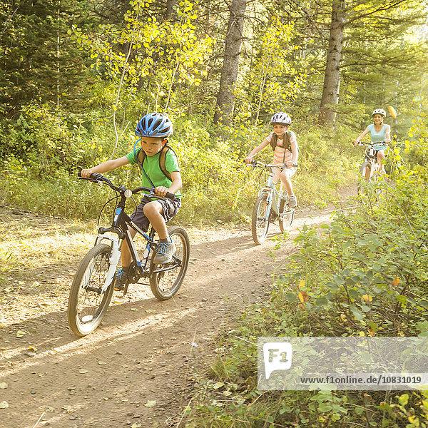 Europäer Fahrrad Rad Riding Mountain National Park Mutter - Mensch